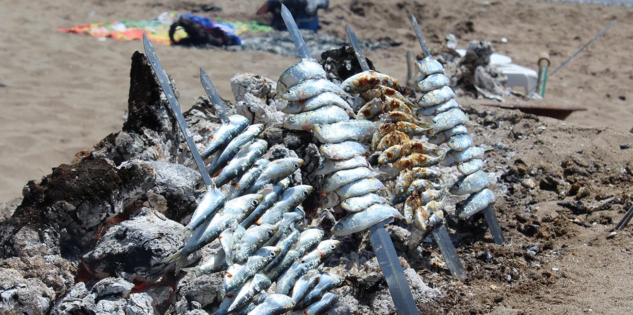 El espeto, generalmente de sardinas, se ha convertido en todo un reclamo turístico y gastronómico de la costa malagueña.