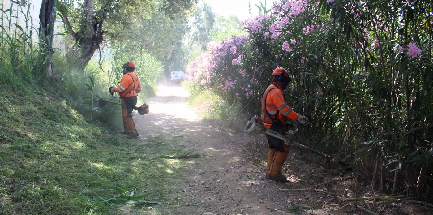 Operarios desbrozando en la Senda Fluvial.